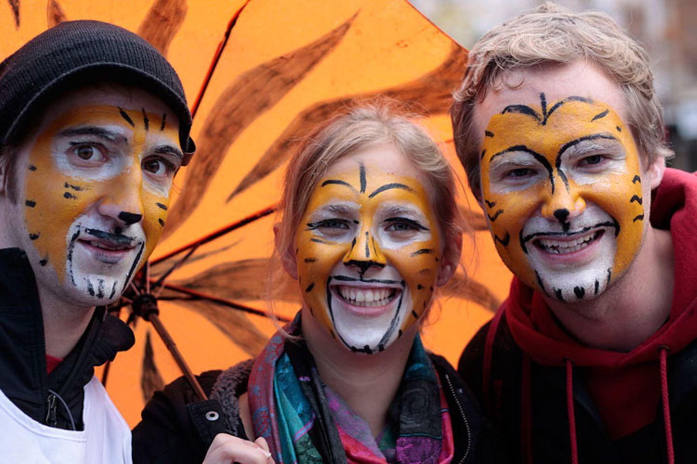 Tiger: Bedrohte Jäger - Bild 10