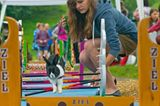 Kaninchenturnier: Auf die Pfoten, fertig, hopp! - Bild 2