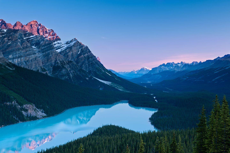 Der Peyto See im Banff National Park in Alberta, Kanada