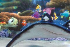 Kino: Kinotipp: Findet Nemo 3D - Bild 2