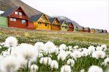 Fotogalerie: Schönheit des Nordens
