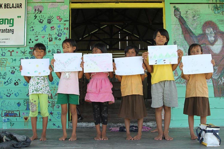 Menschenaffen: Orang-Utans in Not - Bild 14
