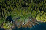 Clayoquot Sound
