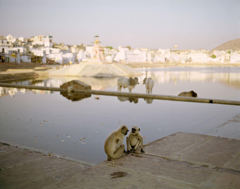 Fotogalerie: Momentaufnahme Indien - Bild 4