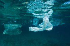 Umweltverschmutzung: Ein Meer von Plastikmüll - Bild 2