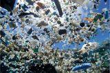 Umweltverschmutzung: Ein Meer von Plastikmüll - Bild 6