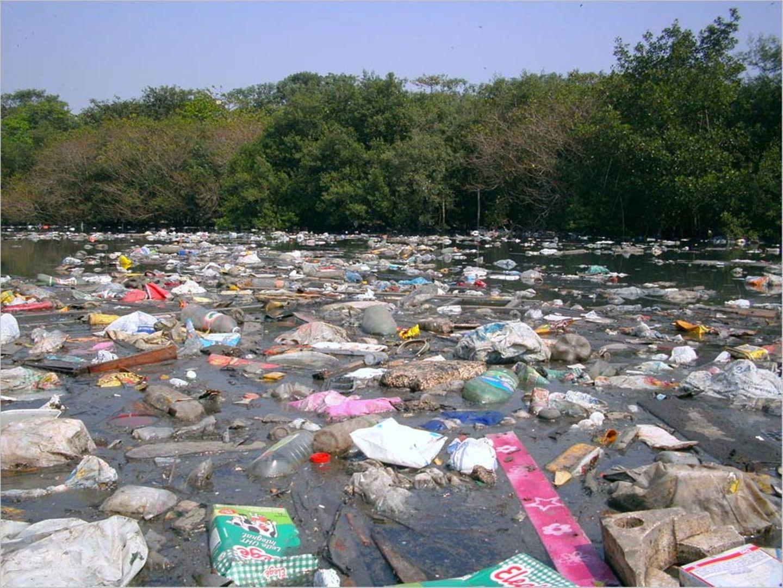 Umweltverschmutzung: Ein Meer von Plastikmüll - Bild 9