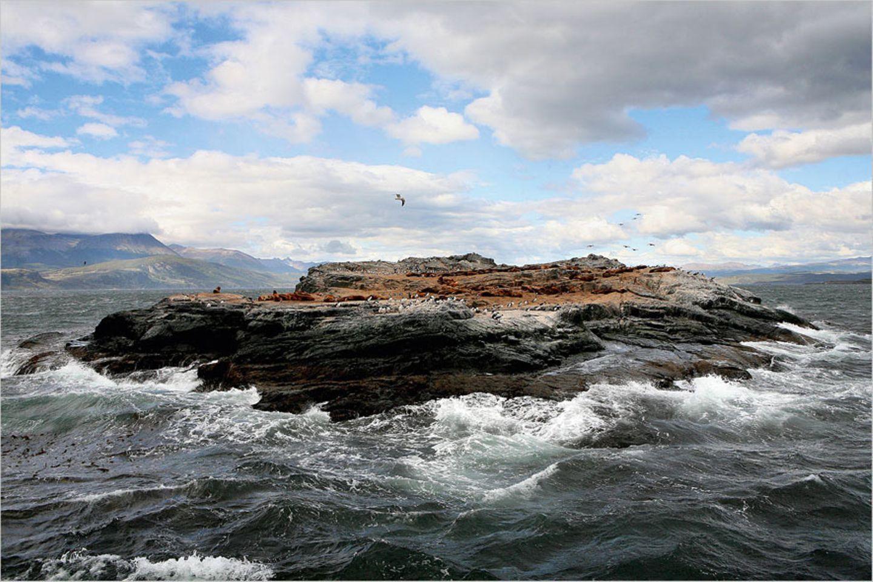 Fotogalerie: Abenteuer Expeditionskreuzfahrt - Bild 8