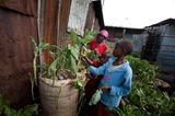 Unicef-Fotostrecke: Die Oase im Slum - Bild 10