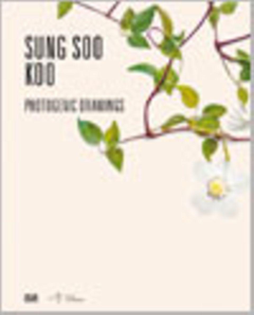 Fotogalerie: Sung Soo Koo Photogenic Drawings Edited by Ilwoo Foundation, Seoul 2012 (engl.)