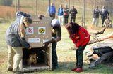 Neues Zuhause für Löwenfamilie - Bild 7