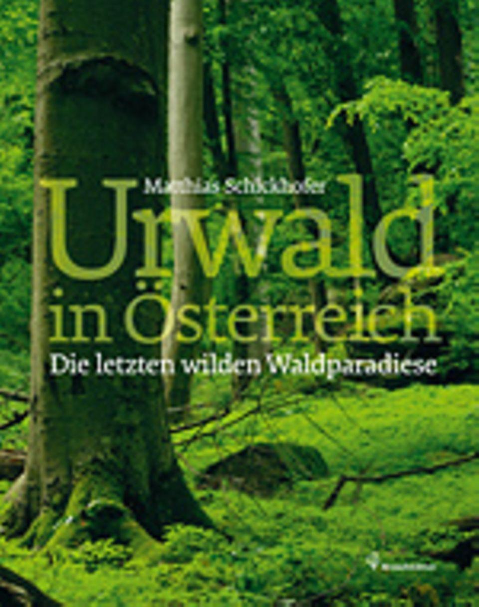 Fotogalerie: Matthias Schickhofer Urwald in Österreich Die letzten wilden Waldparadiese Brandstätter Verlag 2013 144 Seiten, 29,90 Euro