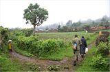 Fotogalerie: Der Batwa-Trail - Bild 3