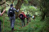 Fotogalerie: Der Batwa-Trail - Bild 6