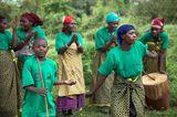 Fotogalerie: Der Batwa-Trail - Bild 8