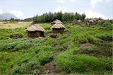 Fotogalerie: Der Batwa-Trail - Bild 10
