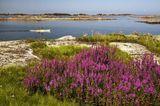 Fotogalerie: Landschaftwunder Schweden - Bild 8