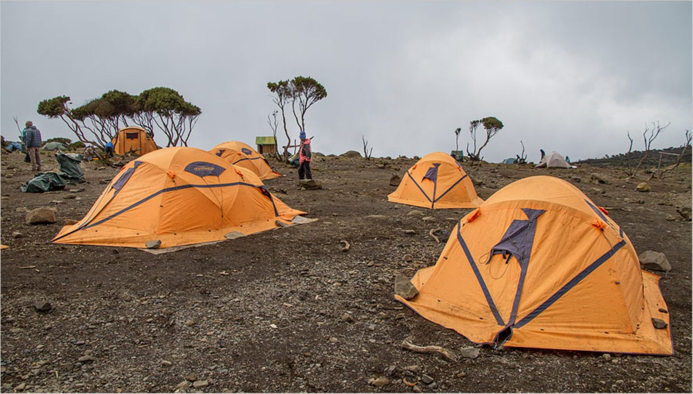 Fotogalerie: Hoch hinaus in Afrika - Bild 7