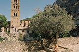 Fotogalerie: Fotogalerie: Dorfschönheiten - Bild 2