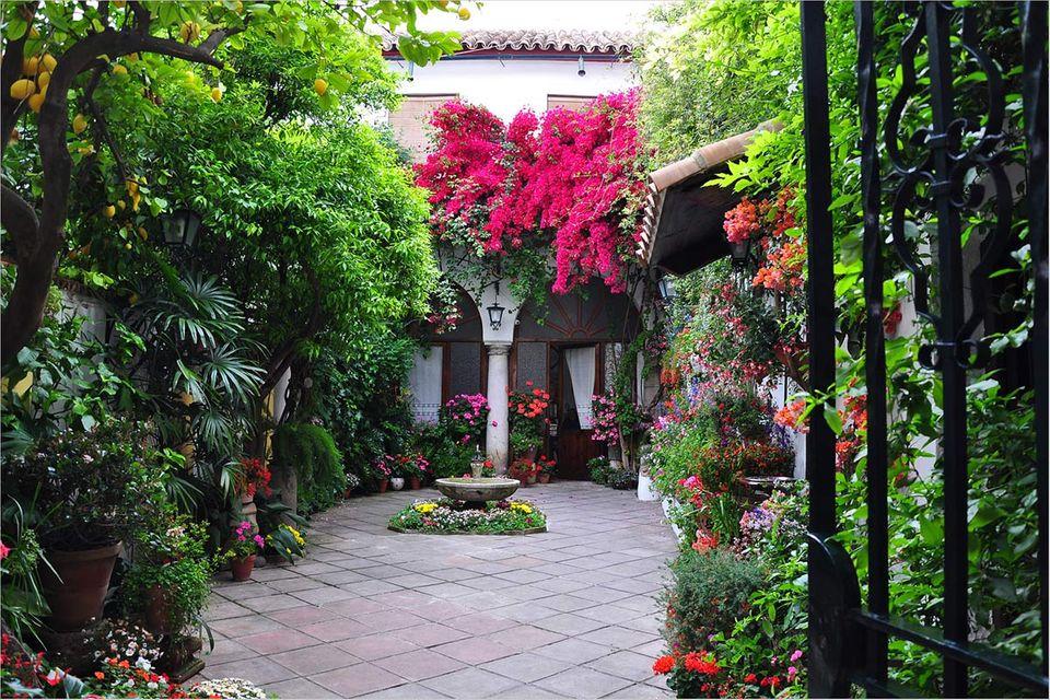 Fotogalerie: Die Innenhöfe von Córdoba