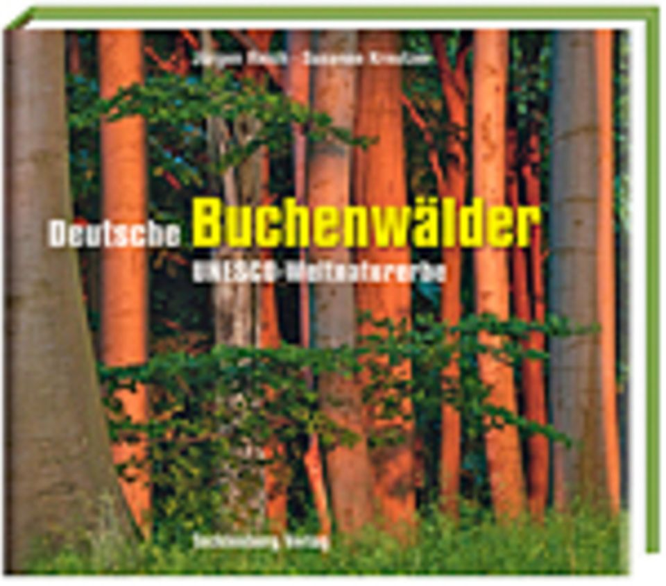 Fotogalerie: Jürgen Reich und Susanne Kreutzer Deutsche Buchenwälder 136 Seiten, 158 Abbild., Tecklenborg Verlag