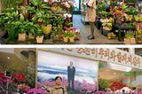 Blumenladen-Vergleich