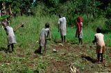 Hoffnung für Waisenkinder in Uganda - Bild 8
