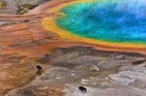 Die besten Naturfotografien 2013