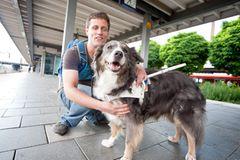 Blindenhunde: Gespann mit guter Führung