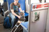 Hunde: Blindenhunde: Gespann mit guter Führung - Bild 5