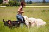 Hunde: Blindenhunde: Gespann mit guter Führung - Bild 12