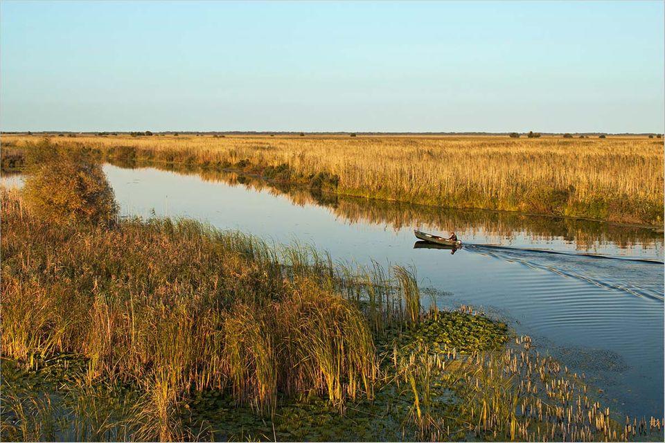 Fotogalerie: Eine Fahrt durchs Donaudelta