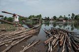 Fotogalerie: Traditionelle Mekong-Fischerei vor dem Aus - Bild 2