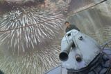 Kino: Kinotipp: Percy Jackson 2 - Bild 10