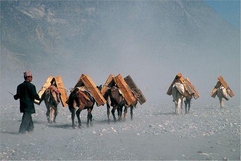 Fotogalerie: Faszination Nepal