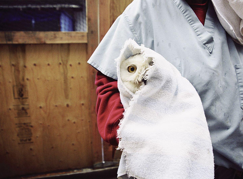 Tiere: Fotostrecke: In guten Händen