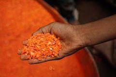 UNICEF: Warum Rajib täglich schuftet - Bild 3