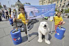 Tierschutz: Fotostrecke: Eisbären schützen
