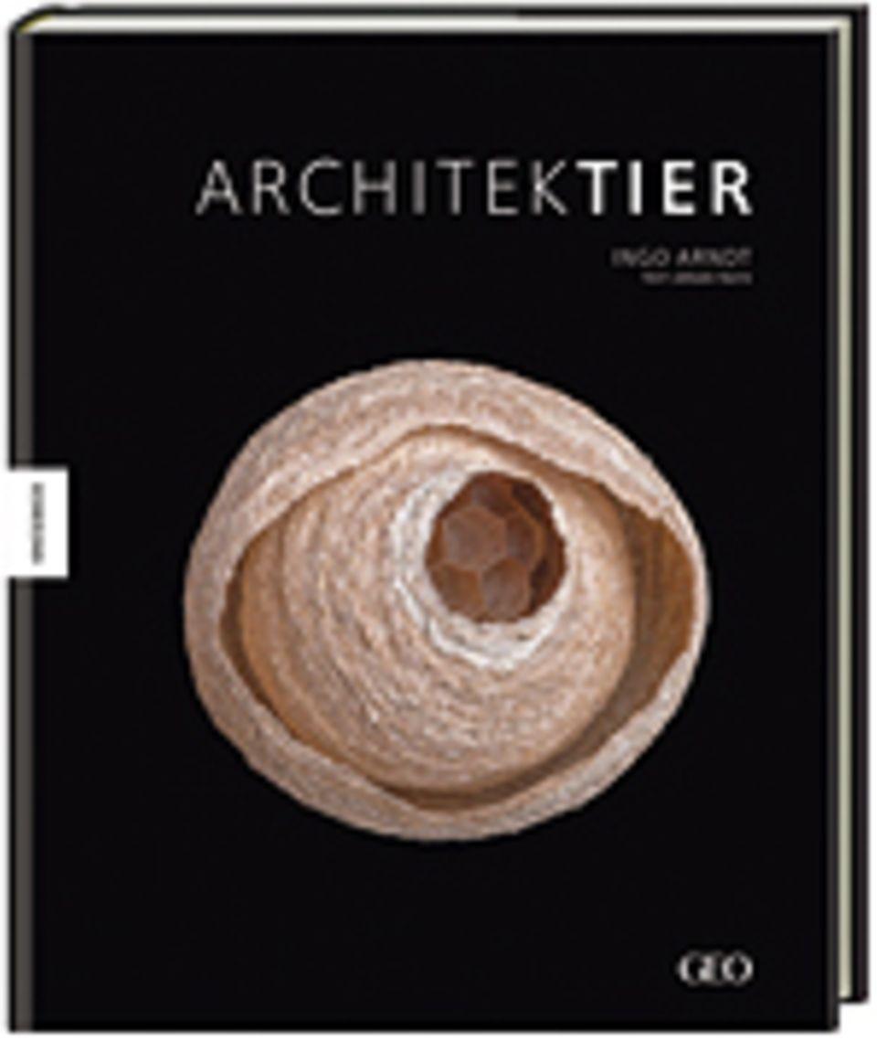 Architektier: Architektier Fotos von Ingo Arndt, Text von Prof. Dr. Jürgen Tautz Geb., 160 S., 49,95 Euro Jetzt im GEO shop bestellen