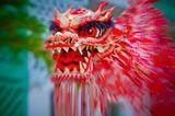 Drachen Legenden: Die Fabeltiere im Check