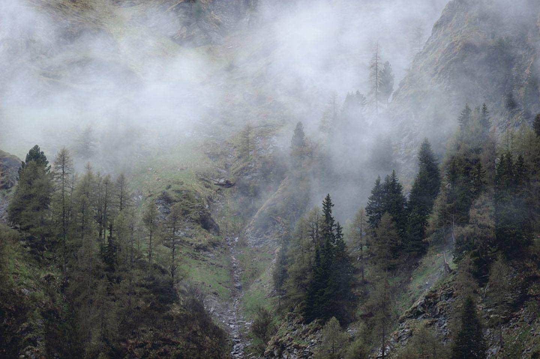 Fotogalerie: Bedrohte Schönheit: Der Nationalpark Hohe Tauern - Bild 13