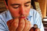 Fotostrecke: Palmenhörnchen Rob und Ziehvater Paul - Bild 10