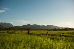 Reiseziel 2014: Guyana, Südamerika