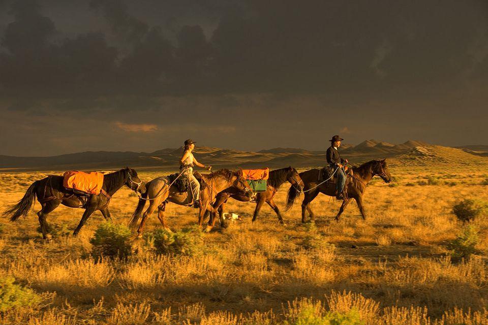 Interview: Transamerika mit dem Pferd