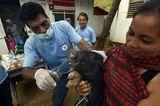 Fotostrecke: Tiere retten, Menschen helfen! - Bild 7