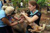 Fotostrecke: Tiere retten, Menschen helfen! - Bild 9