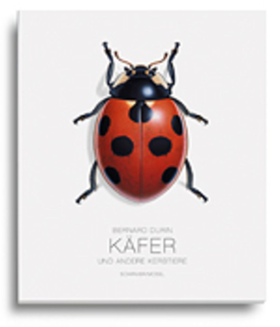 Fotogalerie: Bernard Durin Käfer und andere Kerbtiere Schirmer/Mosel 2013 156 S., 60 Farbtafeln, 49,80 Euro