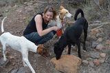 Tierschutz: Neues Leben für Streunerhunde - Bild 5