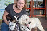 Tierschutz: Neues Leben für Streunerhunde - Bild 17
