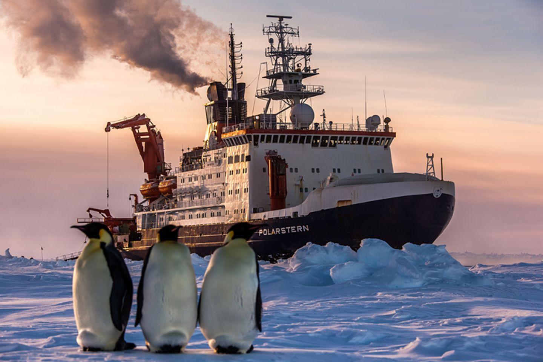 """Fotostrecke: Auf dem Forschungsschiff """"Polarstern"""""""